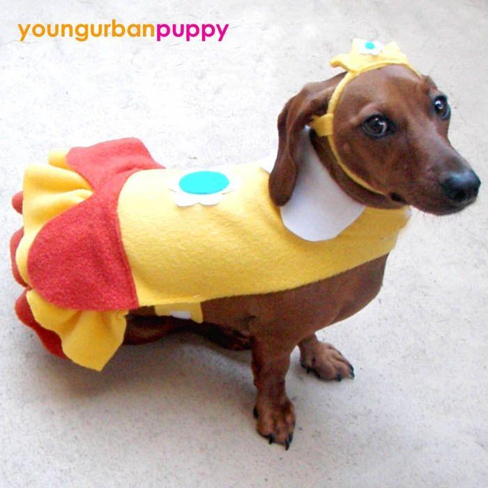 dog costumes   Homemade Mario Bros. Dog Costumes