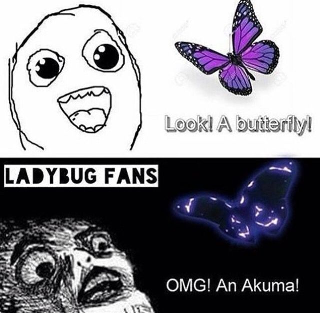 """This actually happened. I saw a butterfly and I be like 2 my friend: """"OMG! RUN! HAWKMOTH'S RELEASED ANOTHER AKUMA! RUUUUN!"""""""