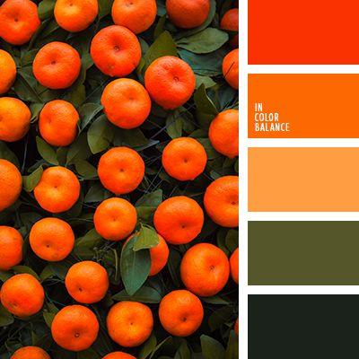 апельсиновый, зеленый, красный, мандариновый цвет, оливковый, оранжевый, оттенки зеленого, подбор цвета в интерьере, тёмно-зелёный, цвет мандаринов, яркий оранжевый.