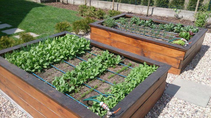 Zrób to sam. Nawadnianie podwyższonych grządek warzywnych. DIY. Hand made watering system for raised garden beds.