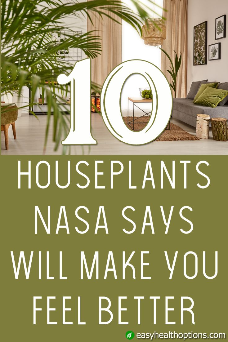 112 Best The Benefits Of Plants Images On Pinterest