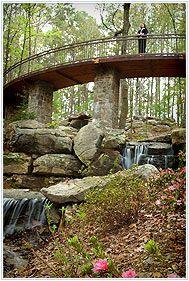 Millsap Canopy Bridge - Arkansas Nature Trails - Garvan Gardens