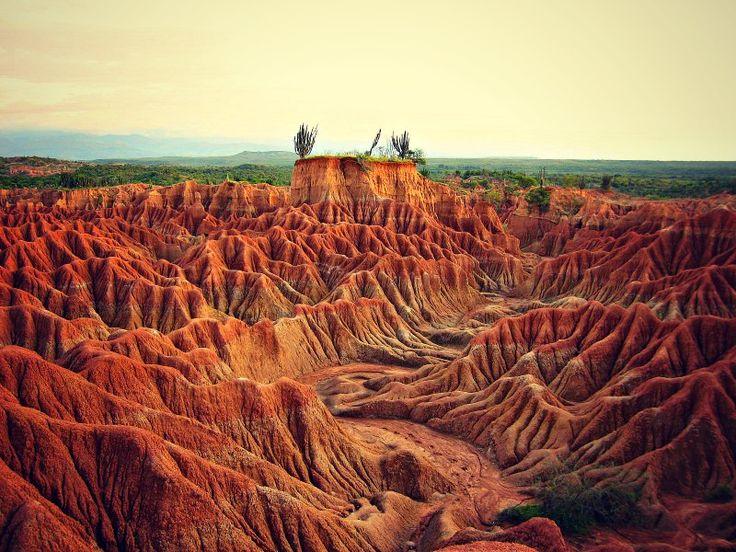 Bizarre Felsformationen, ausgewaschene Canyons, eine rot-braune Mondlandschaft – das ist El Desierto de Tatacoa. Die Tatacoa Wüste war in grauer Vorzeit Teil eines Meeres und von prähistorischen Tieren bevölkert. Heute ist die zerklüftete Landschaft ein wahres Highlight einer Reise durch Kolumbien. Eine Wanderung durch den Canyon mit seinen riesigen Kakteen ist etwas ganz Besonderes, noch dazu wenn die untergehende Sonne das rötliche Gestein noch intensiver schillern lässt.