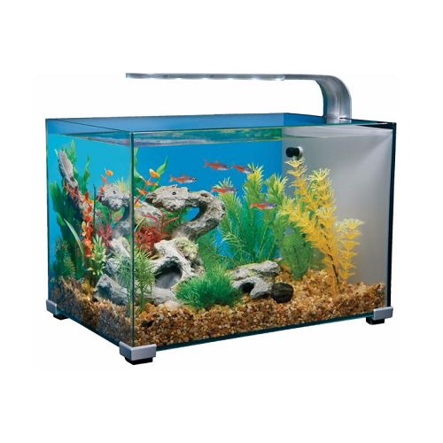 108 best images about betta fish tanks on pinterest for Fish tank top cover