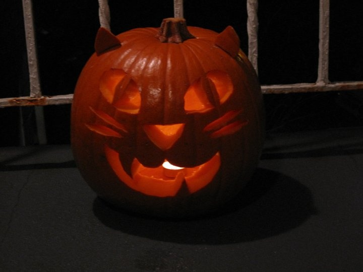 8 best images about cat pumpkin ideas on pinterest for Cat carved into pumpkin