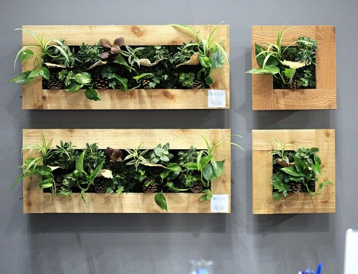 best 25 vertical wall planters ideas on pinterest living wall planter vertical plant wall. Black Bedroom Furniture Sets. Home Design Ideas