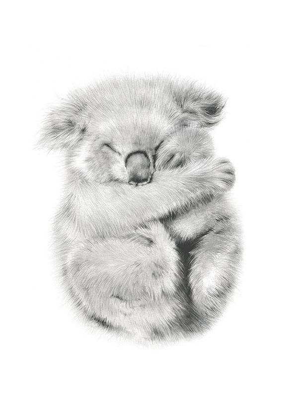 koala  Australian native animals  nursery art  by NayanaIliffe