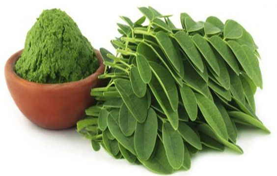 Breaking Study: This Green Herb Could be the Cure to 5 Different Types of Cancer Including Ovarian, Liver, Lung and Melanoma