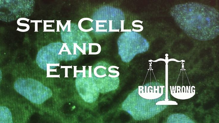 Social and Political Attitudes Towards Stem Cell Treatments