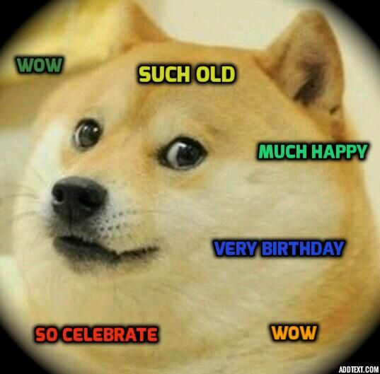 Funny Birthday Meme Reddit : Best images about much doge so funny wow on