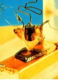 """Pierwszy działający tranzystor (ostrzowy) został skonstruowany 16 grudnia 1947 r. w laboratoriach firmy """"Bell Telephone Laboratories"""" przez Johna Bardeena oraz Waltera Housera Brattaina."""