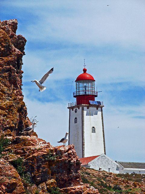 A Gaivota e o Farol. Isla de Berlengas, Portugal Peniche