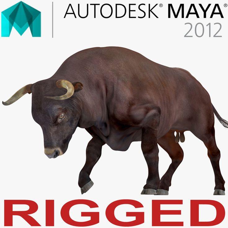 3D Bull Rigged for Maya model