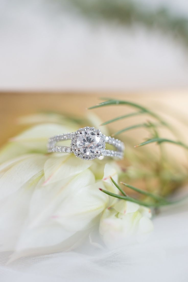 Double band engagement ring | Photography: Leah Dorr Photography - www.leahdorrphotography.com