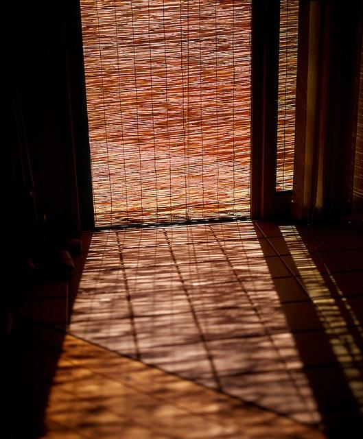 Japanese bamboo screen, Misu 御簾. Photo by kusao_masakari via Flickr.