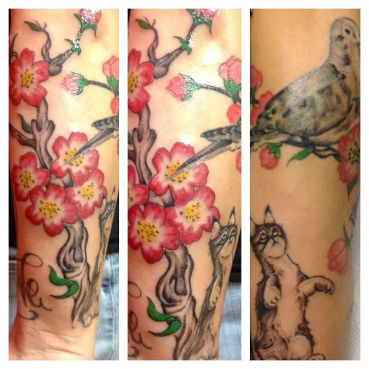 Mourning dove tattoo designs for Mourning dove tattoo
