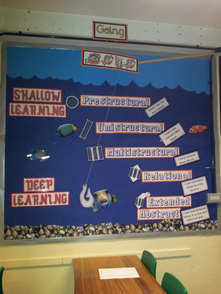 SOLO taxonomy - sea display : )