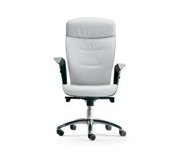 Executive Chair With Armrests BRIEF