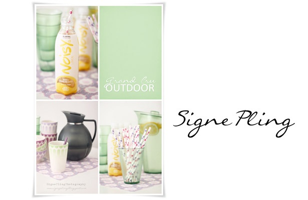 signepling.blogspot.com