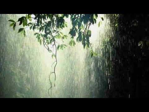 Relaxing sound of rain   Classical relaxing music   Rain