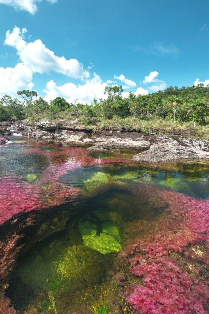 Formaciones rocosas en Caño Cristales  Colombia Paisajes  Zugang zu unserem Blog finden Sie viel mehr Informationen   https://storelatina.com/colombia/travelling  #viajem #Колумби #Kolumbie #கொலம்பியா