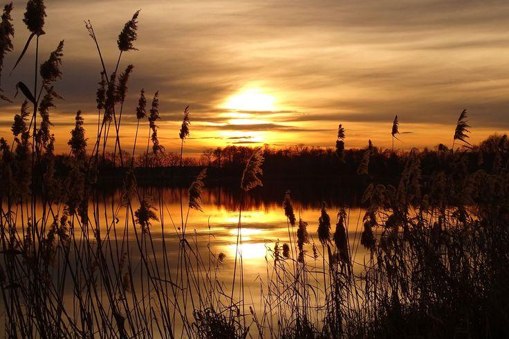 sunset - Dolina Baryczy