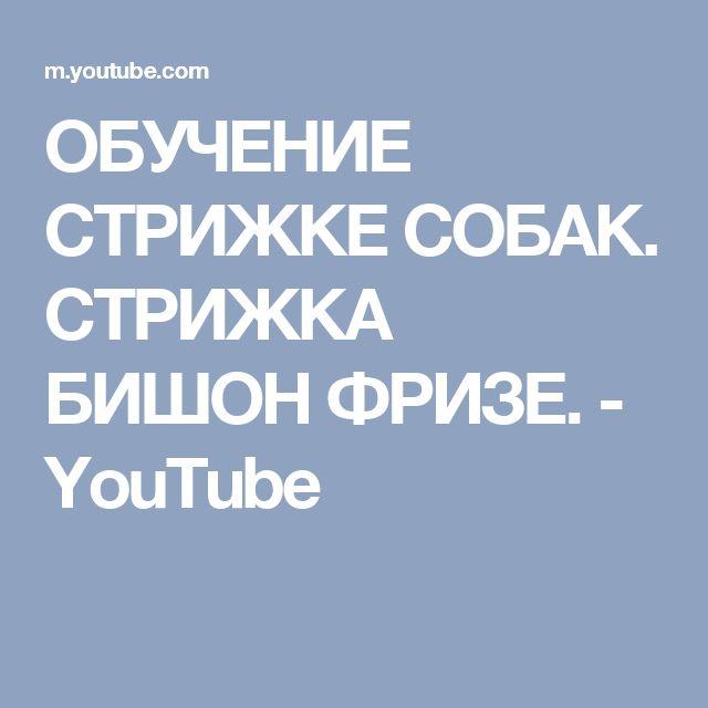 ОБУЧЕНИЕ СТРИЖКЕ СОБАК. СТРИЖКА БИШОН ФРИЗЕ. - YouTube