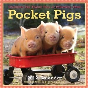 Pocket pigs