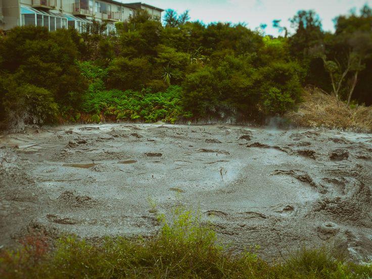 Backyard Pool (2013)  Rotorua, New Zealand. Words & Image: © Gary Light (2017). Creative Commons: (CC BY-NC-ND4.0).  #photography #art #nature #landscape #travel #newzealand