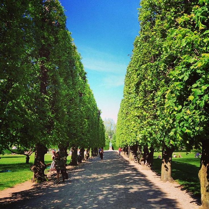 Kongens Have - Gorgeous urban park right in the centre of #Copenhagen