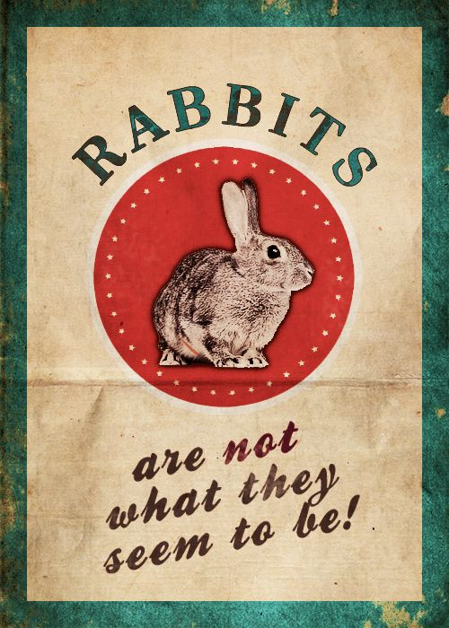 Night Vale. But it's also true.  Rabbits are Faery animals and the appearance of a white rabbit in your life means you are going on a journey of self discovery.  Don't worry about the destination, enjoy the trip and Follow The White Rabbit.