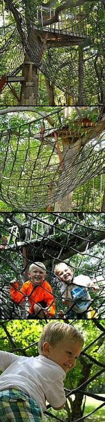 DIY - Inexpensive alternative for playground equipment---we have a cargo net in the trees and the kids LOVE it!!! My hubs is so smart:)