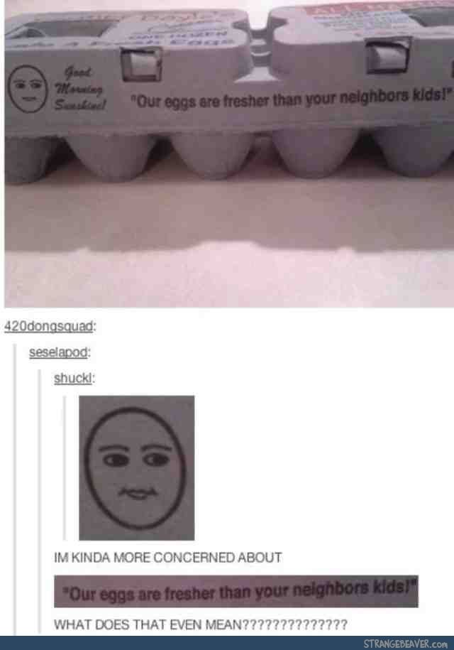 Funny tumblr comments