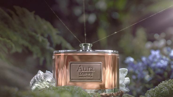 다음 @Behance 프로젝트 확인: \u201cLOEWE Aura Magnetica Commercial\u201d https://www.behance.net/gallery/45934109/LOEWE-Aura-Magnetica-Commercial