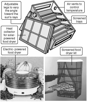 lesson plan for solar dryer In this educational resource page you will find lesson plans and teaching tips about science learn about renewable energy, sunlight, collectors, electricity, semiconductors, electrons, and panels.