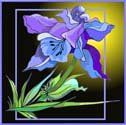 Blue & Purple Iris - Etched Vinyl Stained Glass Film, Static Cling Window Decal