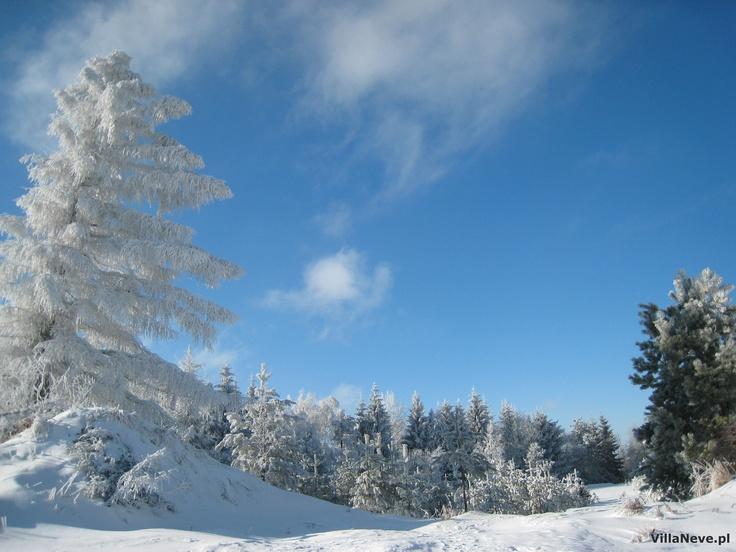 Winter in Ustrzyki Dolne, Gromadzyń