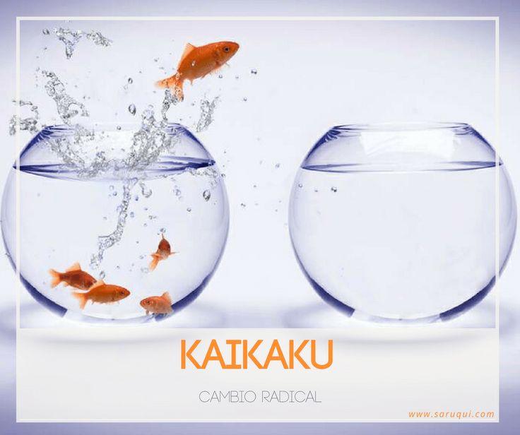 Kaikaku o cambio radical