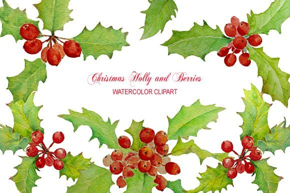Watercolor Christmas Holly Berry by Corner Croft on @creativemarket