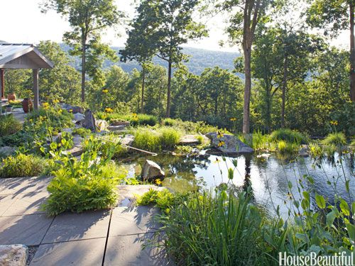 An all-natural swimming pool in the backyard of a geothermal house. Design: Chris Rawlings