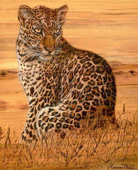 ARIANNA STATUTI Leopardo, pirografia più pastello bianco su massello di ciliegio, 17x24.5x1.5 cm.   2010