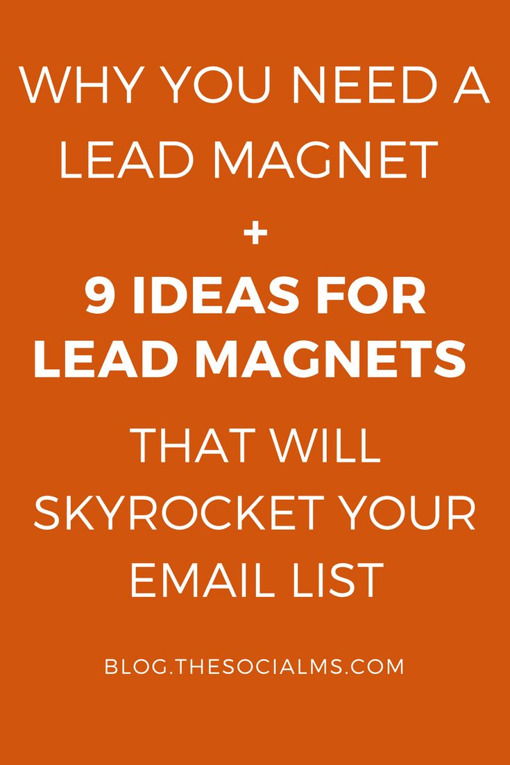 Why You Need A Lead Magnet And 9 Ideas For Lead Magnets That Will Skyrocket Your Email List