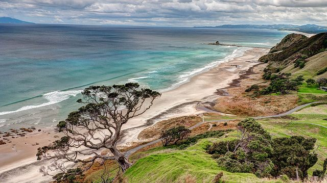 Mangawhai Cliffs Walkway at Mangawhai Heads on New Zealand's North Island