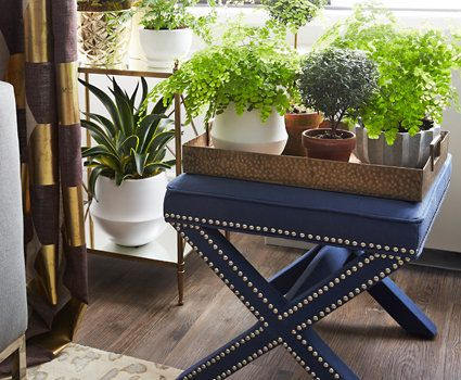 Ottoman Empire ~ Rethink the usual uses  for an ottoman. Here,  a tailored nail-studded  X-base ottoman steps in  as an impromptu plant  stand and becomes part  of a verdant display  when not used as a seat.