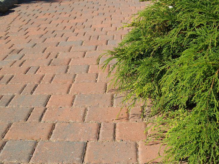 Rudus Milano-kivet, väri punamusta http://www.rudus.fi/pihakivet
