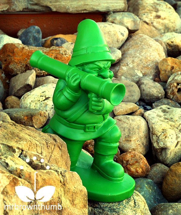 This Garden gnome means business!