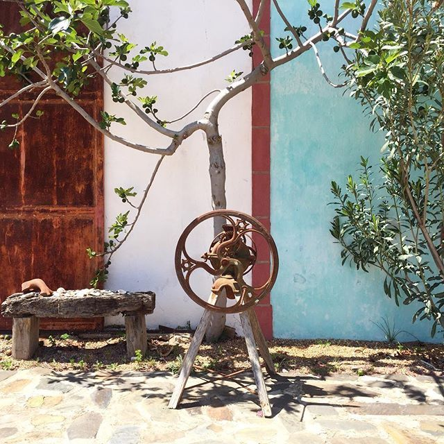 Outdoor details with #beautifulcolours  #ecohotel #algarve #portugal  At joandso.com LinkInBio © Photo by @joandso