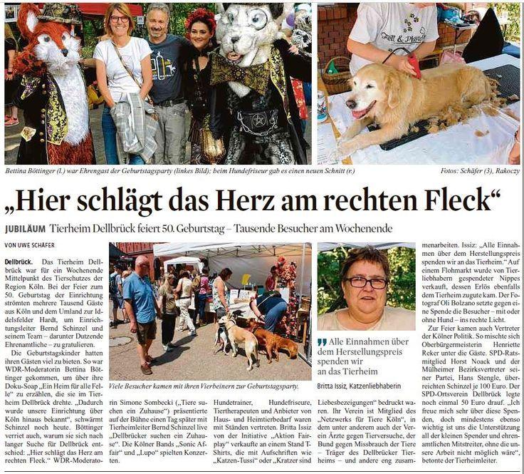 Tierheim Koln Dellbruck Zeitungsausschnitt Zeitungsartikel Zeitungsbericht Som Nero Und Rotanes Fotos Tierheim Tiere Zeitungsbericht