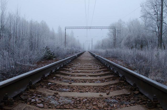 Наталья Бондарева / Nikon D5100 / композиция, пейзаж