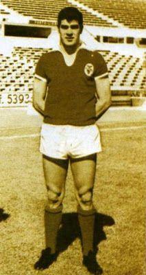 Estreia: 23 de Agosto de 1962, em Gotemburgo, contra um misto dessa cidade sueca, com o recém-chegado Fernando Riera como treinador. Primeiro jogo oficial:  21 de Outubro de 1962, no Restelo (Belenenses 1 - S.L.Benfica 4) . Último jogo:  23 de Fevereiro de 1969, na Tapadinha (Atlético 0 - S.L.Benfica 2)